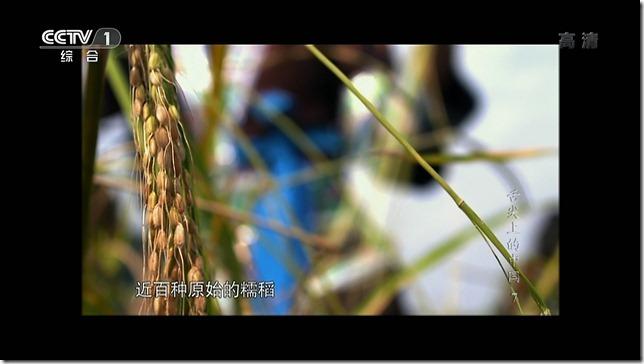 snapshot20120818200550